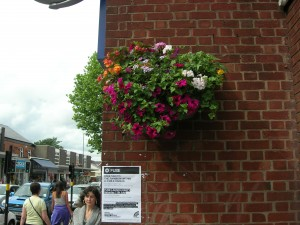 Counting Flowers on the wall?  In Kings Heath we did.  Again, a tad more stylish than plonking troughs on ugly barriers?